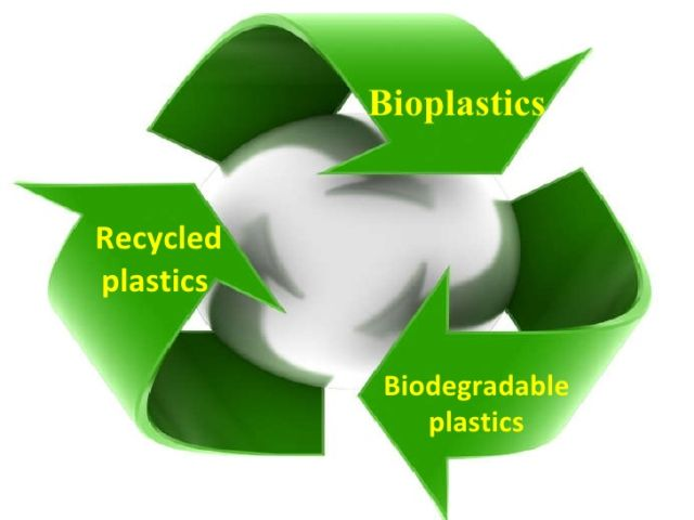 Bioplastic Companies Pioneering a Positive Change - Clean Future