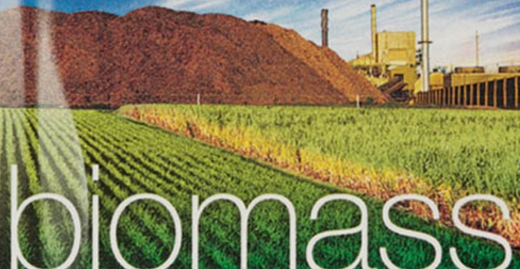 ITOCHU launches biomass power plant in Japan - Clean Future
